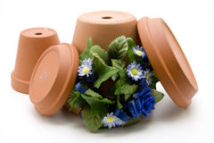 Flowerpot and bouquet Stock Image