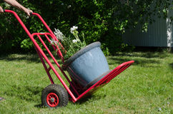 Flowerpot on a cart Royalty Free Stock Image