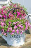 Potenciômetro com flores Fotografia de Stock