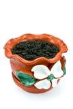 Flowerpot dell'argilla rossa con terreno fotografia stock libera da diritti