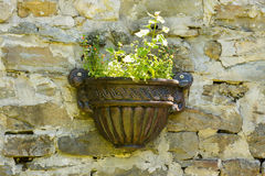 Flowerpot in the Dryanovo Monastery in Bulgaria Royalty Free Stock Photography