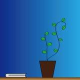 Flowerpot e libro Immagine Stock