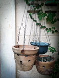 Flowerpot Stock Photos