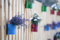 Flowerpot on a fence Stock Images