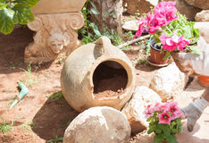 Flowerpot in the garden Royalty Free Stock Photography