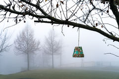 Flowerpot hanging from a tree Stock Photos