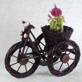 Flowerpot innovateur photographie stock libre de droits