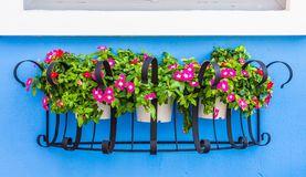 Flowerpot iron Stock Images