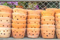 Flowerpot. The flowerpot made from baked clay in sunday market Royalty Free Stock Images