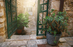Flowerpot next to Open Gate Royalty Free Stock Image