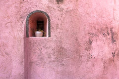 Flowerpot on pink wall. Stock Images