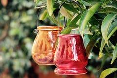 Flowerpot, Plant, Still Life Photography Royalty Free Stock Image