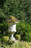 Flowerpot in Regents Park in London Royalty Free Stock Image