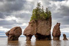 Flowerpot rocks of Hopewell, New Brunswick. The flowerpot rock formations at Hopewell Rocks, Bay of Fundy, New Brunswick. The extreme tidal range of the bay royalty free stock photos