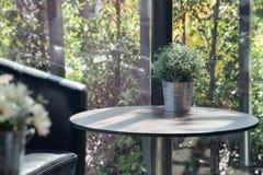 Flowerpot on table in garden. morning light. Flowerpot on table in garden royalty free stock photos