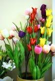flowerpot tulipan obraz stock
