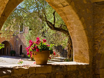 Flowerpot in un monastero Fotografie Stock Libere da Diritti