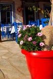 Flowerpot vermelho na taberna tradicional grega Imagens de Stock