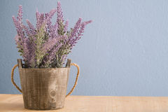 Flowerpot with violet lavender. Flowerpot with violet lavender on wood floors and blue cement background stock photography