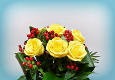 Flowerpot with yellow roses. A view of a flowerpot with yellow roses and a blue background Royalty Free Stock Images