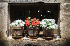 flowerpots Photo libre de droits