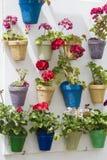 flowerpots royalty-vrije stock foto