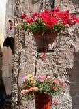Flowerpots stockfoto