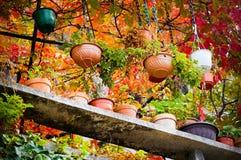 flowerpots Fotografia Stock