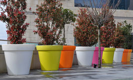 Flowerpots. In different colours look vividly Royalty Free Stock Photography