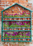 Flowerpots against a red brick wall Stock Image