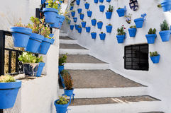 Flowerpots in an Andalusian town. Flowerpots in Iznajar, an Andalusian town Royalty Free Stock Photo
