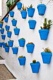 Flowerpots in an Andalusian town. Blue flowerpots in an Andalusian town Royalty Free Stock Photo