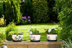 Flowerpots. With bamboo motives in the garden Stock Images