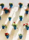 Flowerpots and colorful flower on a white wall, in Cordoba, Spai Stock Images