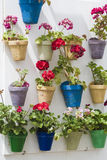 Flowerpots. In courtyards in white wall Royalty Free Stock Photo