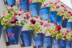 Flowerpots. In courtyards in white wall Stock Images