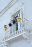 Flowerpots di ceramica Immagini Stock