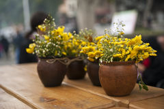 Flowerpots with flowers. Flowerpots with yellow flowers on a table royalty free stock photography