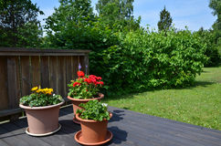 Flowerpots in garden Stock Photos