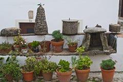 Flowerpots Stock Photography