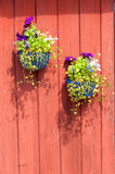 Flowerpots hanging on a wall Royalty Free Stock Photo