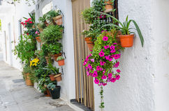 Flowerpots hanging on white wall. Some flowerpots hanging on a white wall royalty free stock image