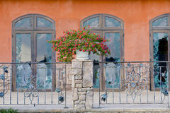 Flowerpots and house plants on the balcony Royalty Free Stock Photography