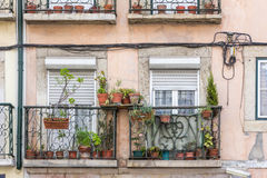 Flowerpots and house plants on a balcony Royalty Free Stock Image