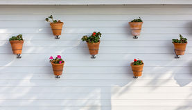 Flowerpots Hung on an Exterior Wall Royalty Free Stock Image