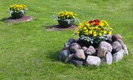 Flowerpots on lawn Stock Photo