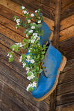 Flowerpots Made of Blue Shoes Royalty Free Stock Images