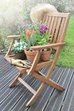 Flowerpots na krześle Obraz Stock