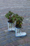 Flowerpots. Original usage of old boots Royalty Free Stock Photo
