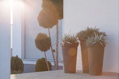 Flowerpots outside the house Royalty Free Stock Photography